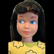 Mattel 1965 Black Haired  Bend Leg Skipper in Tea Party