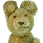 Antique Mohair Jointed Teddy Bear, 1920's