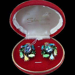 Vintage Schiaparelli Lava Stone Earrings with Box