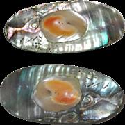 Abalone Blister Pearl Paua Shell Brooch