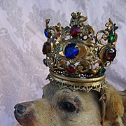 Amusing quirky rare old French taxidermy dog playful position bejeweled crown cabinet curiosity