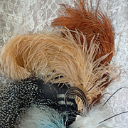Selection 9 delicious old French millinery feather creations for projects