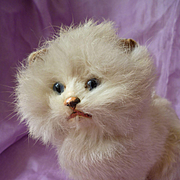 Rare adorable antique cream real fur pussy cat candy container  : blue glass eyes