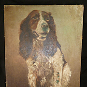 Old portrait painting Springer Spaniel dog : oil on canvas