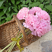 Delicious bouquet French handmade wired pink waxed paper carnation flowers : old stock