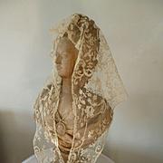 Exquisite 19th C. ecru net lace shawl : hand applied floral foliage motifs