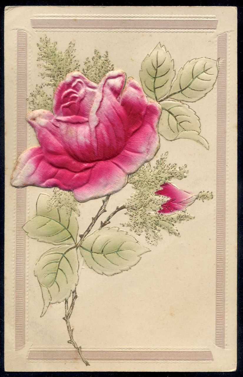 Embossed Fuchsia Rose Antique French postcard