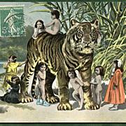 TIGER with Multiple BABIES  Antique German Postcard
