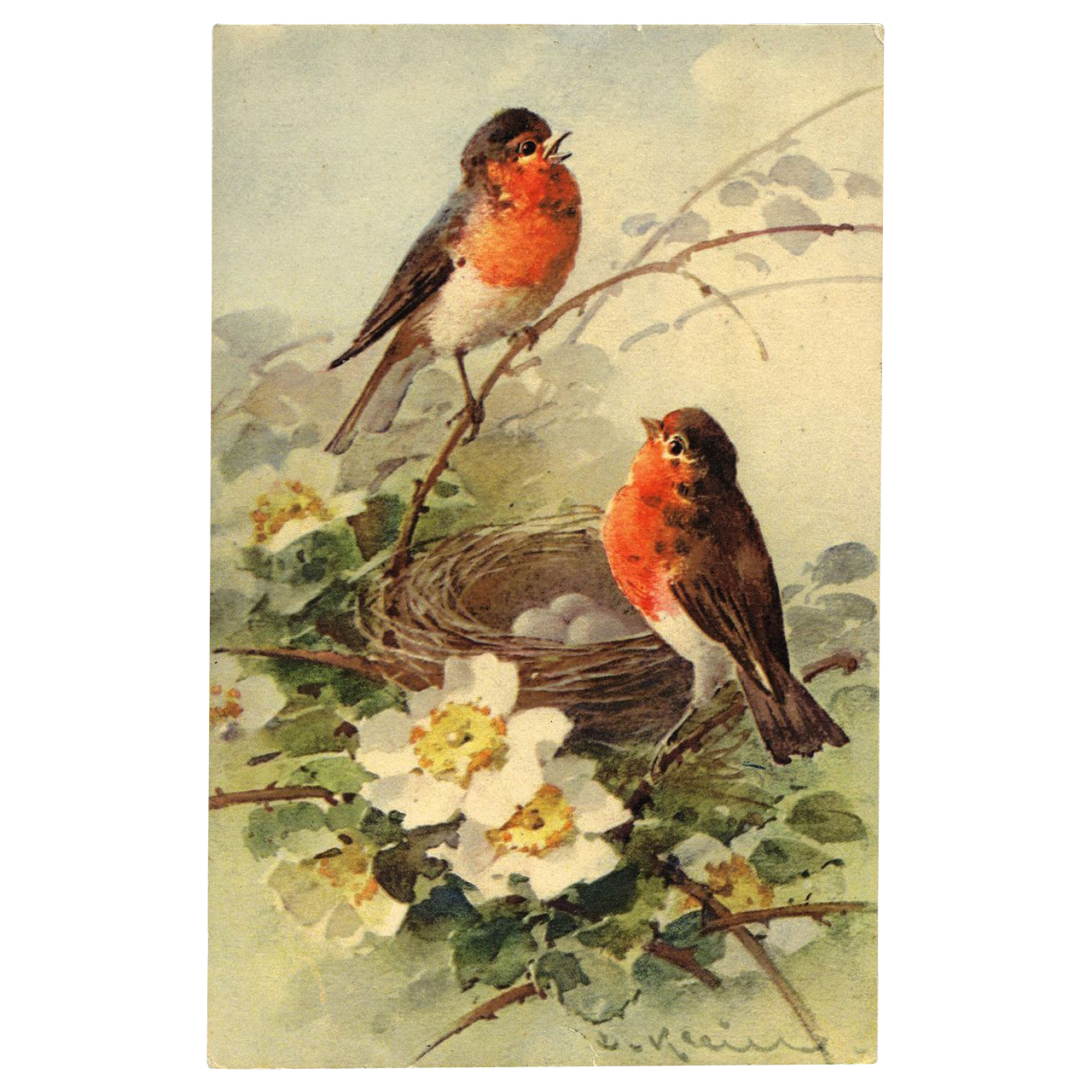 Artist Signed KLEIN Birds Nest Eggs 1911 Postcard LOVE note