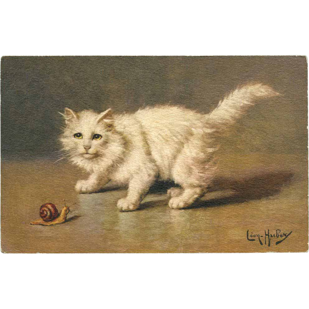 Artist Signed Leon HUBER White cat with SNAIL 1928 French postcard
