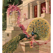 Peacocks Fantasy Temple Unused Italian Postcard Circa 1920s