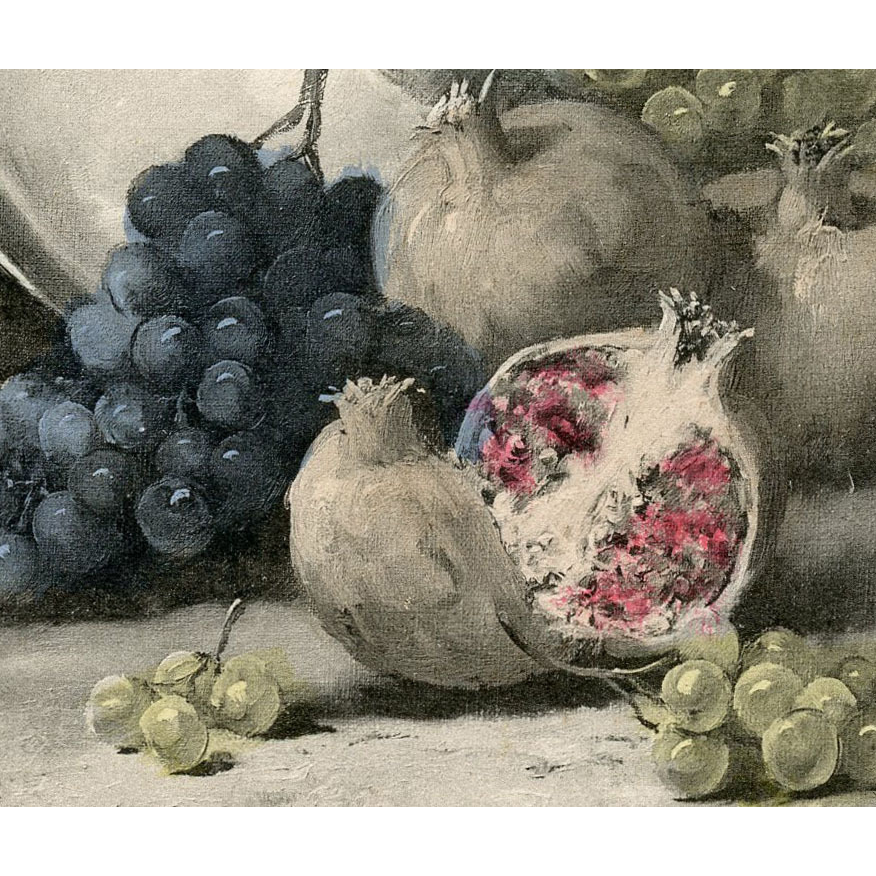 Artist signed Antique Postcard of Still Life with Pomegranates and Grapes