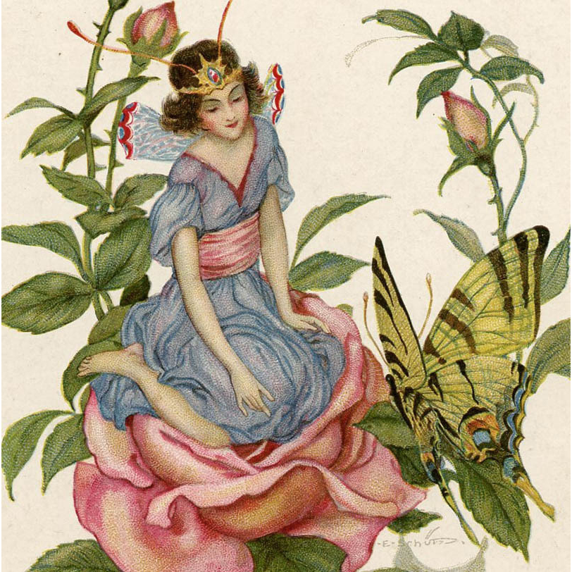 E. Schutz Artist-Signed Fantasy Postcard of Fairy with Butterfly on Rose