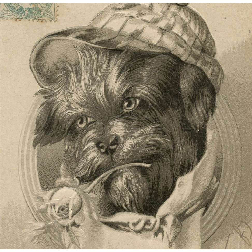 Scottie Dog with Cap and Rose Embossed Antique German Postcard