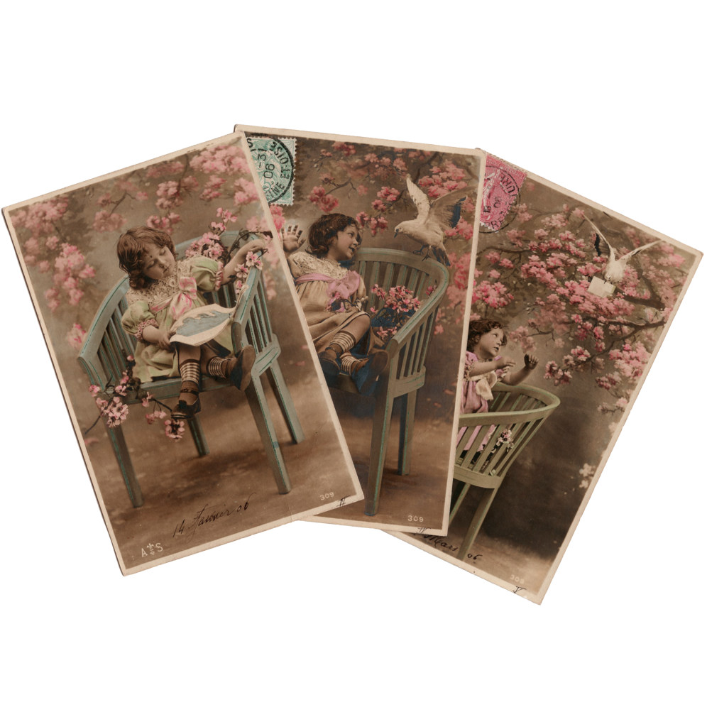 Trio from Postcard Series of Girl with Bird Among Pink Blossoms