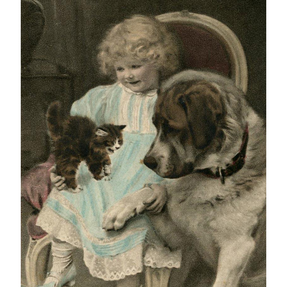 Blonde Girl with St Bernard and Kitten by A.J. Elsley Unused French German Postcard