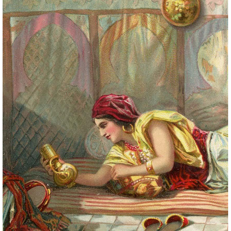 Moroccan Arab in the Harem Antique European Illustrated Orientalist Art Postcard Paris 1913