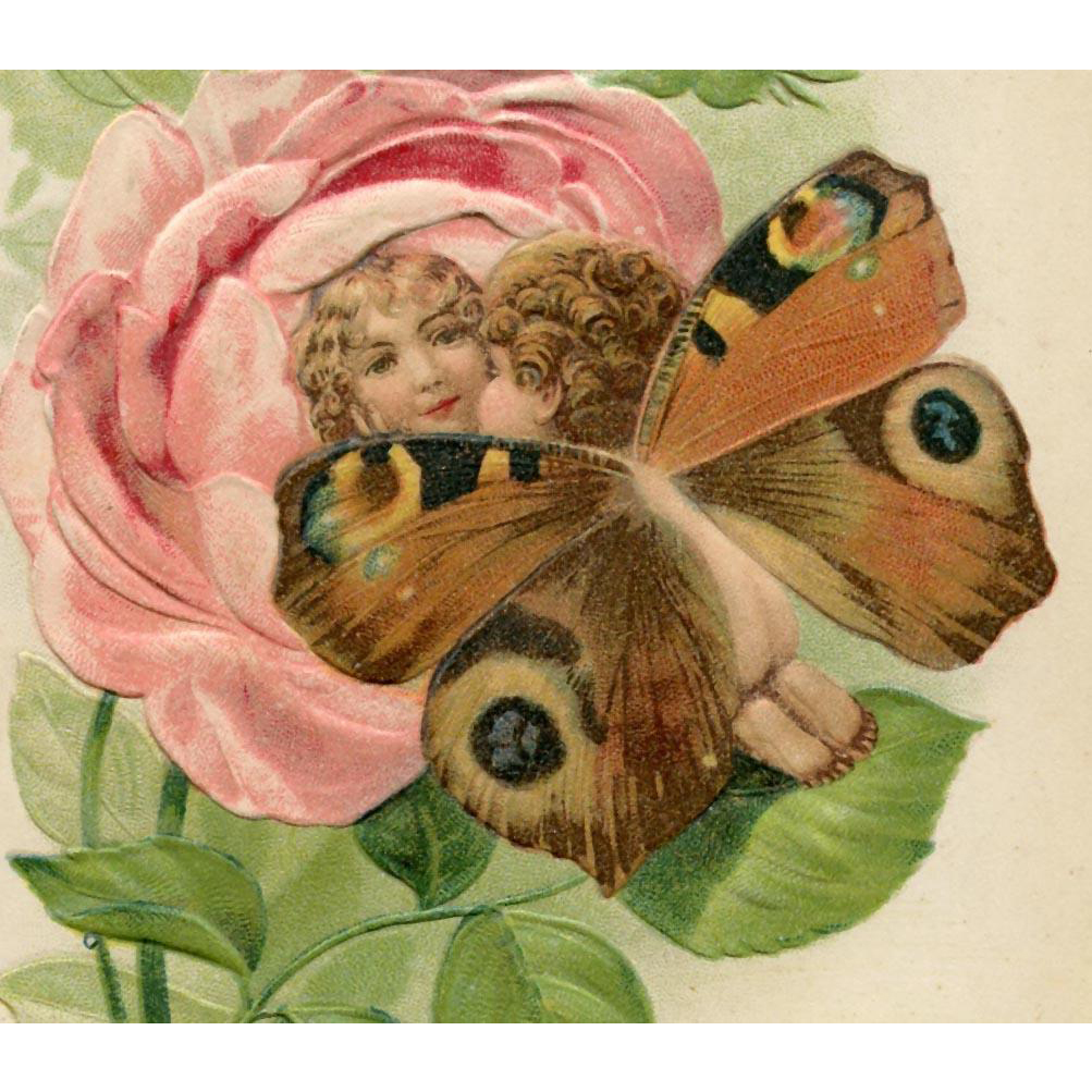 Butterfly Baby Kissing Rose Baby Embossed Antique Fantasy Postcard
