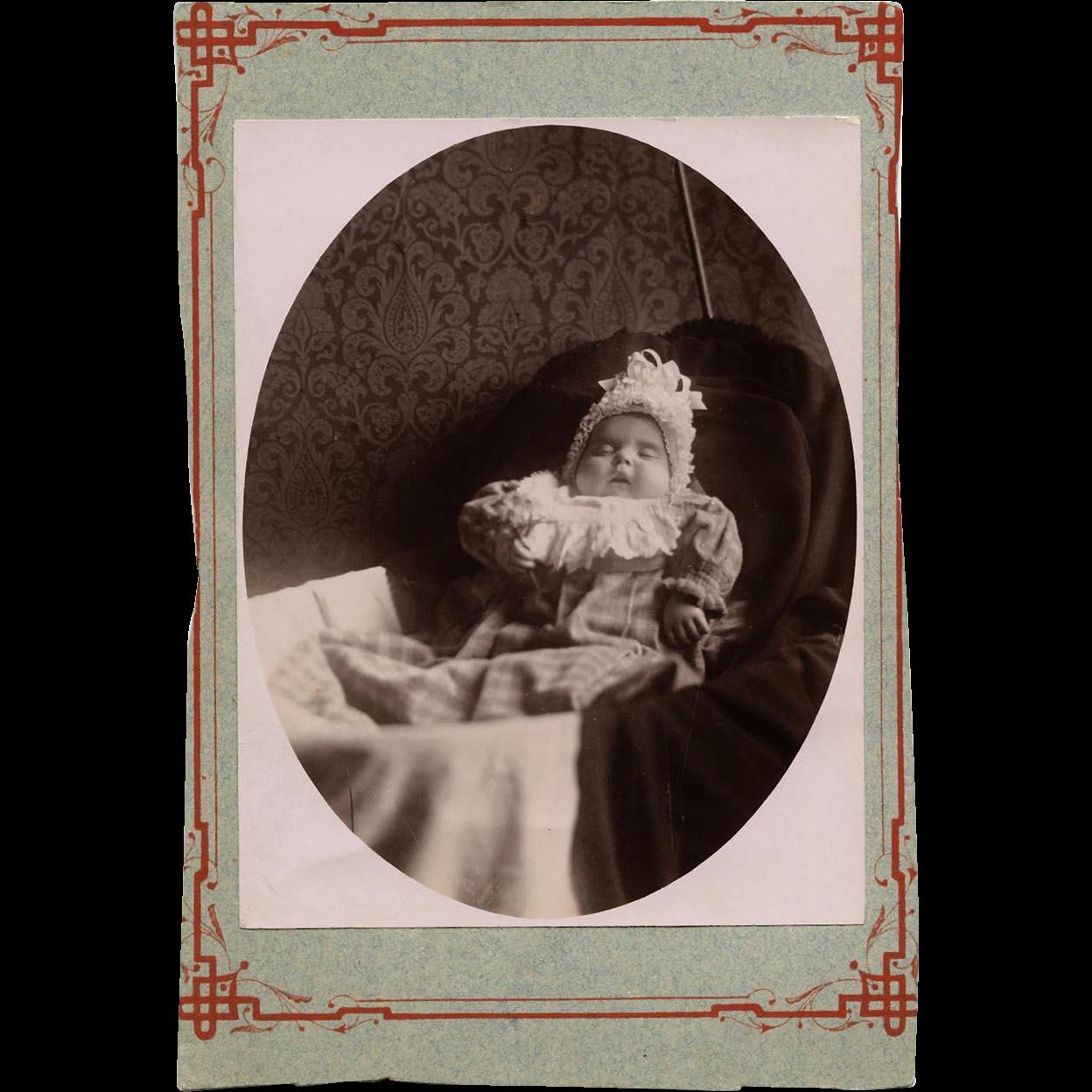 Post-mortem Photograph Baby Holding Dandelion Memorial Portraiture Mourning Portrait