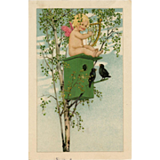 Cupid Playing Harp Atop Birdhouse in Tree Marie Flatscher Vienne Postcard