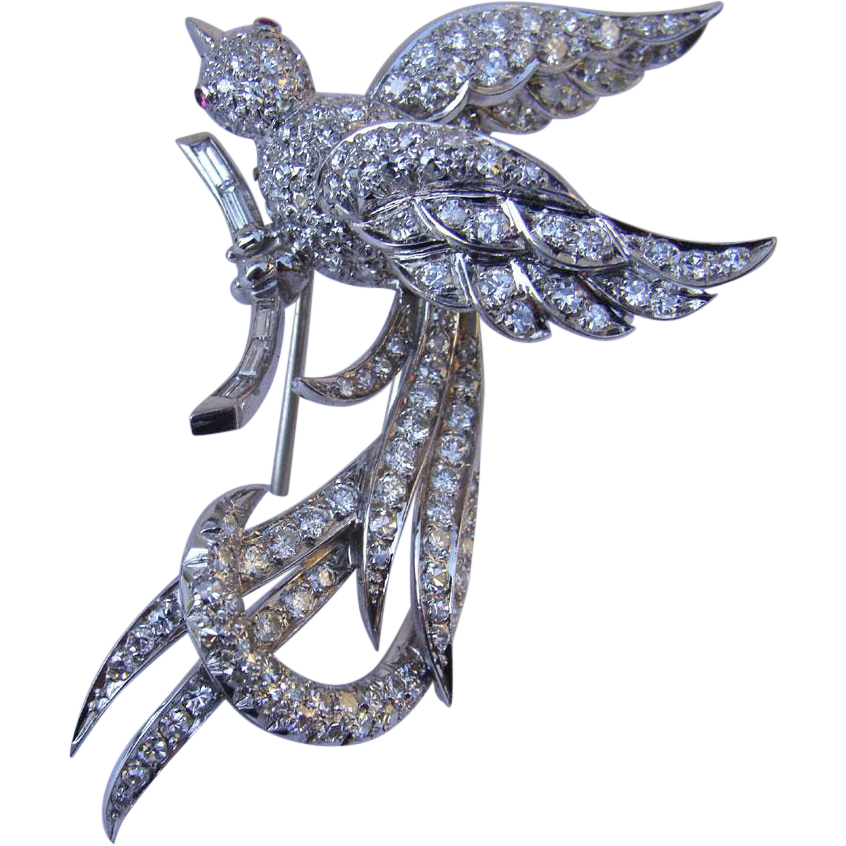 Lyrebird Platinum Diamond Ruby Brooch Paris France 1950