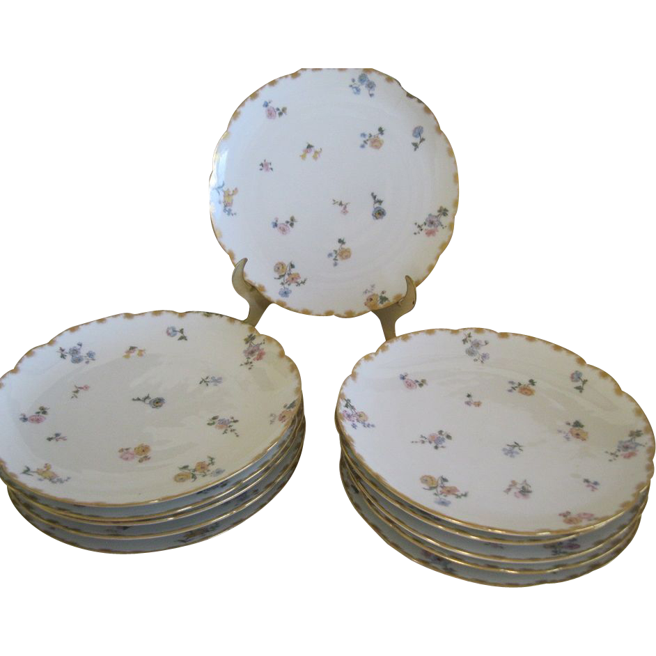 Set Of 11 Floral Plates Haviland & Co Limoges France