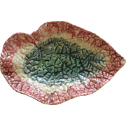 Vintage Majolica Begonia Leaf