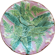 English Majolica Fern and Floral Plate With Great Colors