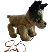 CUTE c.1912 Barvaria D.R.G.M. Trippel Trappel Walking Dog