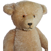 "BEAUTIFUL Beige 21"" English Mohair Teddy Bear"