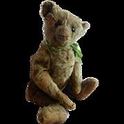 """FANTASTIC Old and Early 15"""" Steiff Teddy Bear"""