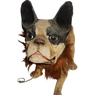 RARE and WONDERFUL Life Like British Pull Toy Growling French Bull Dog c.1890's