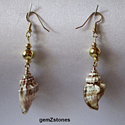 Pretty Gold Electroplated Conch Shell Dangle Earrings