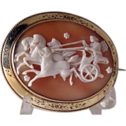 Aurora of the Dawn cameo