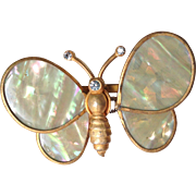 Trembler Butterfly Brooch