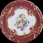 "Beautiful Antique c1830-40 English Hand Painted Botanical Porcelain Plate Ridgeway 7 7/8"""