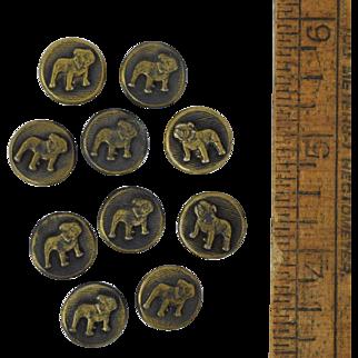"10 Victorian Bulldog Buttons, Brass Plated Metal Antique 9/16"" Dog"