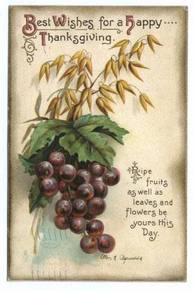 International Art Thanksgiving Postcard - Grapes