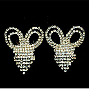 Bigger Better Most Fabulous Rhinestone Shoe Clips