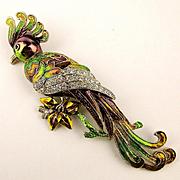 Huge Enamel Rhinestone Bird Pin Exotic