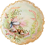 Antique American hand painted porcelain ocean flora cabinet plate signed
