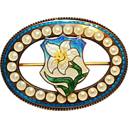 Sterling silver enamel sash pin lily dated 1907