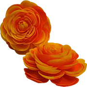 Shoe clips soft plastic petal flower orange