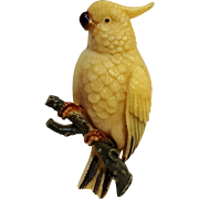 Celluloid cockatoo bird pin