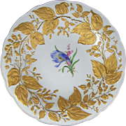 Meissen Porcelain Gold Gilt Enamel Bowl