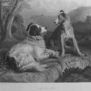 Landseer Antique Print Steel Engraving Newfoundland Collie Dogs Dog Robert Burns 'Twa Dogs'