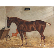 Antique Oil on Canvas Horse & Kitten in a Stable Fred Fitzpatrick Irish 1895