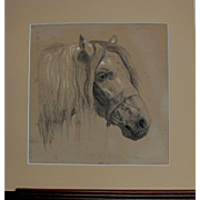 Antique English Graphite Pencil Study Drawing of a Horse by Miralees