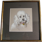 Poodle Dog Study by Elizabeth Bridge RA c. Mid 20th Century Contemporary Frame