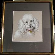 Poodle Dog Study by Elizabeth Bridge RA c. Mid 20th Century Contemporary Frame